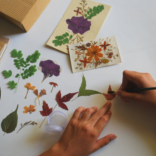 Dried Press Flower Making DIY Kit