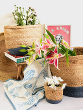 Load image into Gallery viewer, Assorted Multicolor Jute Planters
