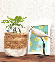 Load image into Gallery viewer, Set of jute planters- Diwali Gift