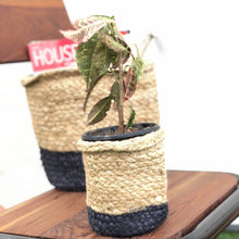 Load image into Gallery viewer, Navy Blue Jute Planter Cum Storage Basket (S,M,L)