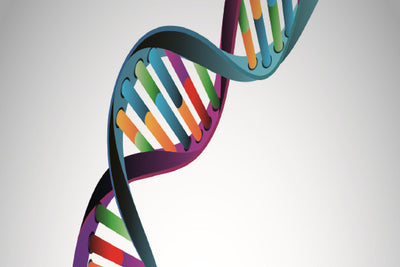 The Facts about DNA Testing