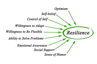 Resilience; an Integrative Perspective
