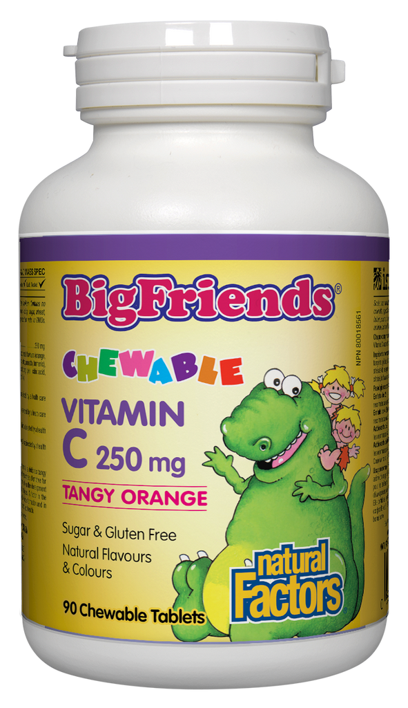 NATURAL FACTORS BIG FRIENDS VITAMIN C 250MG ORANGE 90CHEW
