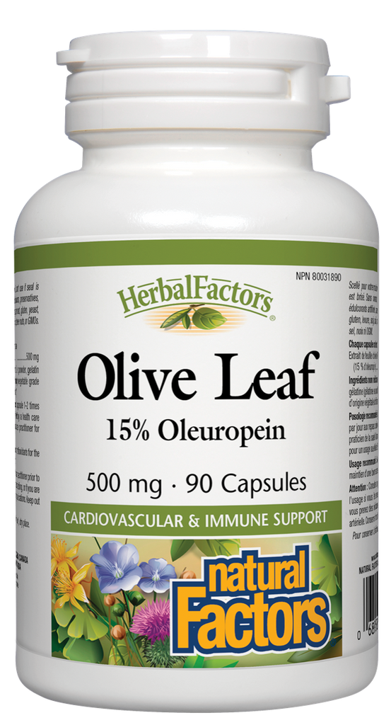 NATURAL FACTORS HERBAL FACTORS OLIVE LEAF 90CAPS