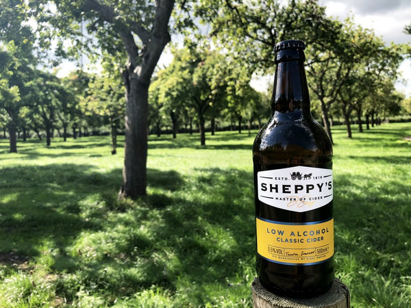Sheppy's Low Alcohol Classic Apple Cider