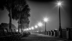 Waterfront Park in Black & White