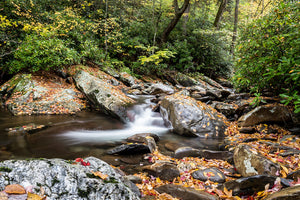 Falls in the Smokies