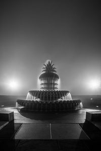 Foggy Pineapple Fountain