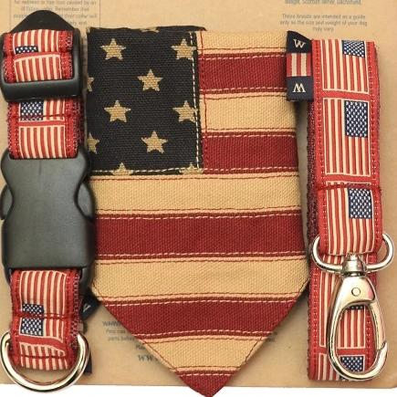 Stars & Stripes Dog Lead and Bandana