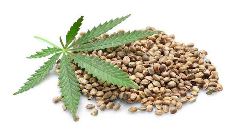 WHAT'S THE DIFFERENCE BETWEEN CBD AND HEMP SEED OIL?