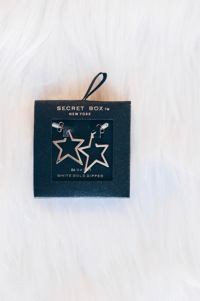 Texas Nights Earring - Silver