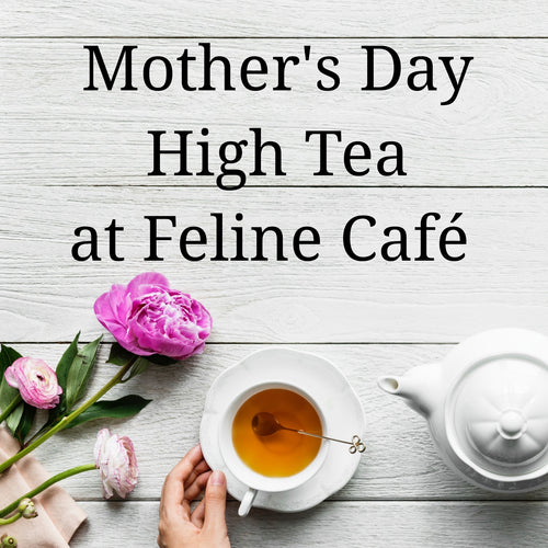 Mother's Day High Tea at Feline Café