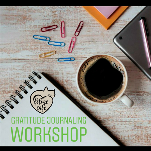Gratitude Journal Workshop