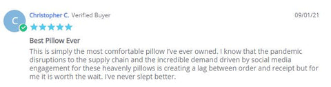 customer review that pillows are worth the wait