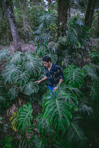 Sometimes you want camouflage. Sometimes you want to stand out at a luau. Tombolo can offer you both! Hawaiian shirts for everyone and every occasion. Resortwear. Streetwear. Anywear.