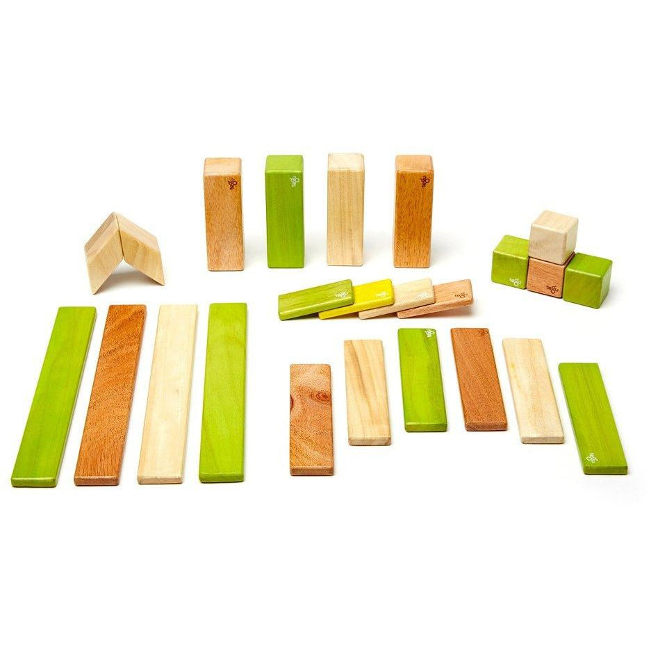 Tegu 24 Piece Magnetic Wooden Block Set: Jungle
