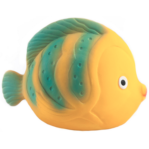 CaaOcho La the Butterflyfish