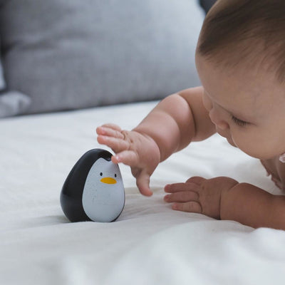 Plan Toys Penguin
