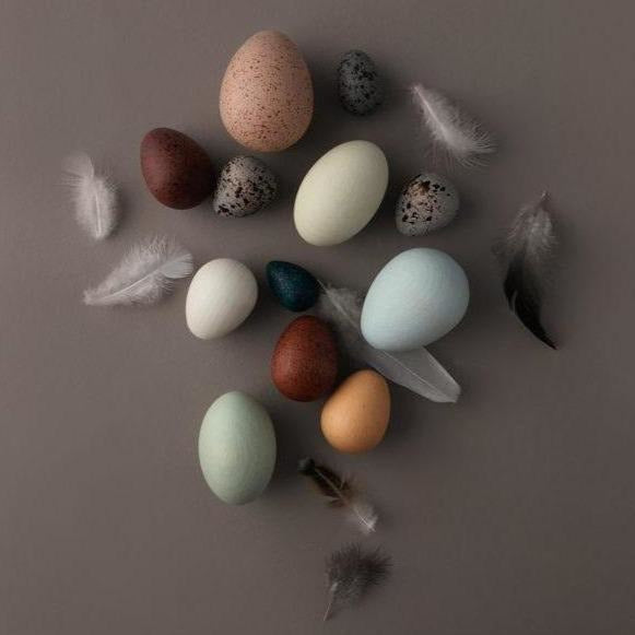 Moon Picnic - A Dozen Bird Eggs