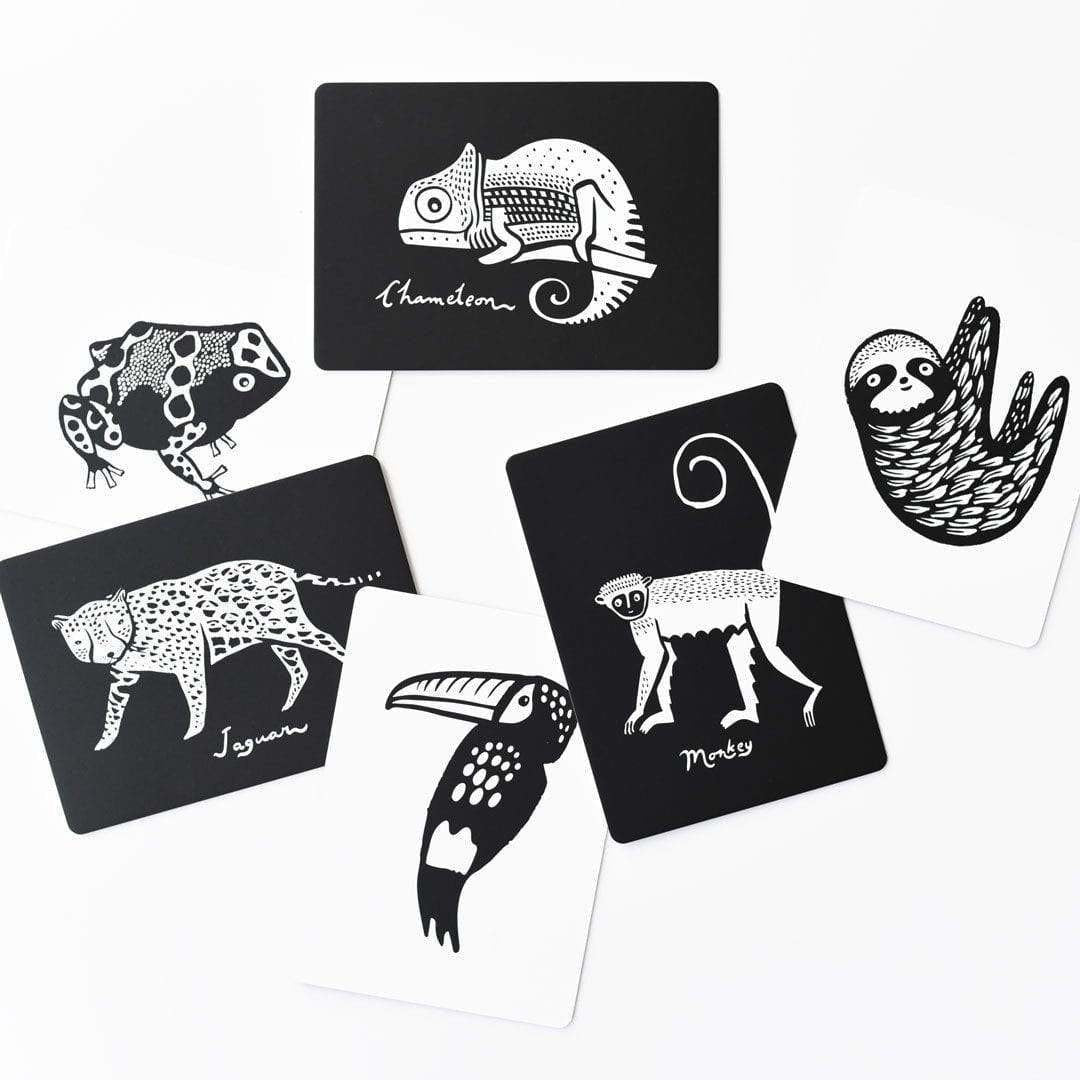 Wee Gallery Animal Flash Cards The Natural Baby Company