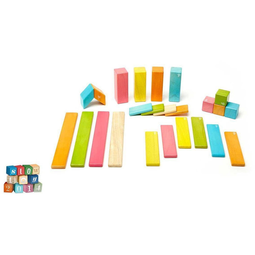 Tegu 24 Piece Magnetic Wooden Block Set: Tints