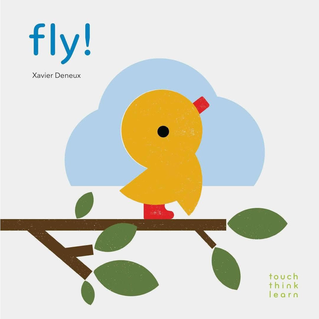 Touch Think Learn - Fly