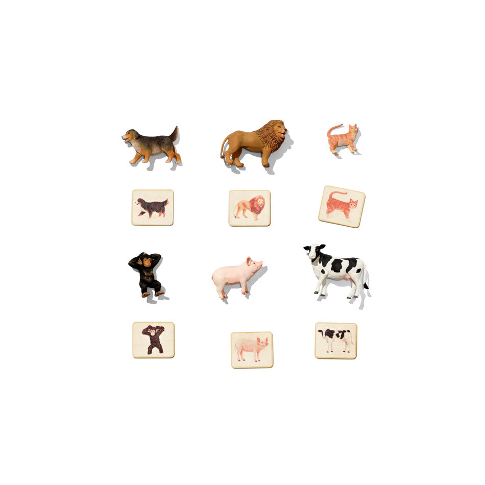 cards and figurines of animals