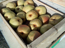vente poire comice toulouse direct producteur fruits amap