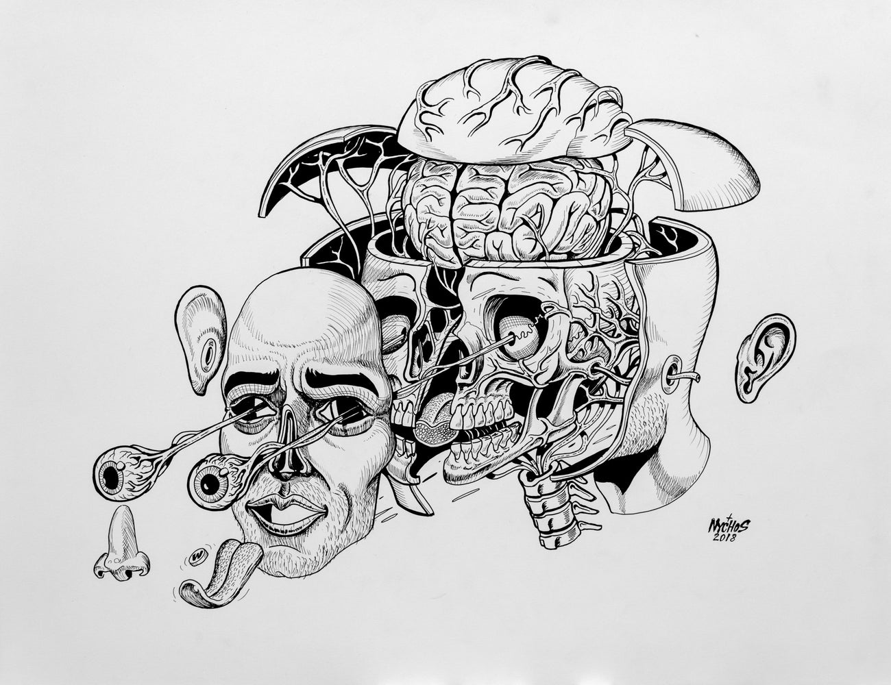 Nychos: Dissection of a Head (Drawing)