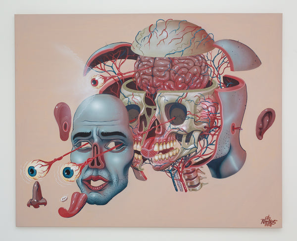 Nychos: Dissection of a Head