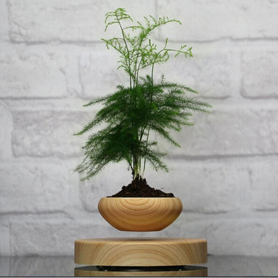 Japanese Magnetic Levitating Bonsai Plant Pot