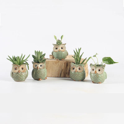 Owl-shaped Flower Pot Set