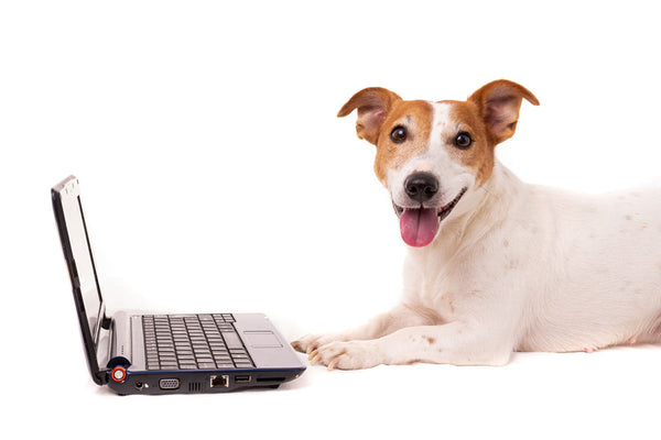 Join the MyPetPrint.co Email Newsletter
