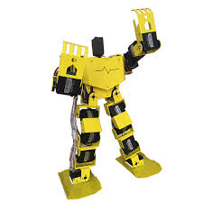 Bipedal Robot Kits from PMD Way with free delivery, worldwide