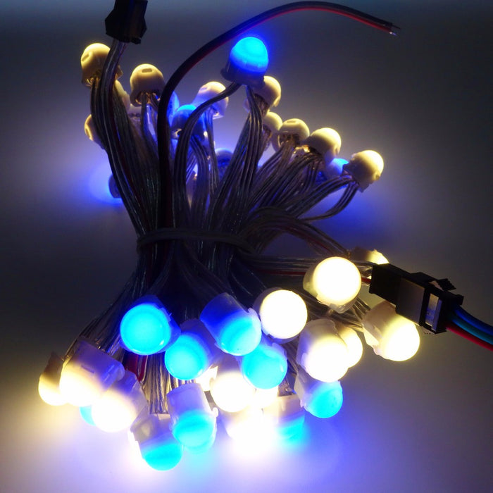 Pre-wired SK6812 12mm RGB LED Pixel Strings - 50 Pieces from PMD Way with free delivery worldwide