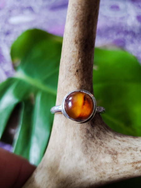 Size 8 amber ring