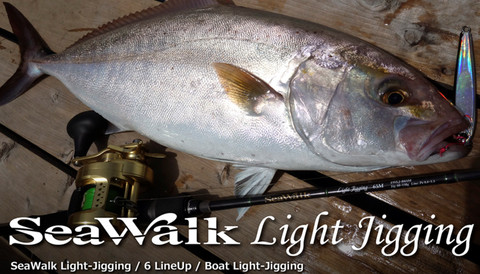 Yamaga Blanks Seawalk Light Jigging B66L Baitcast Rod