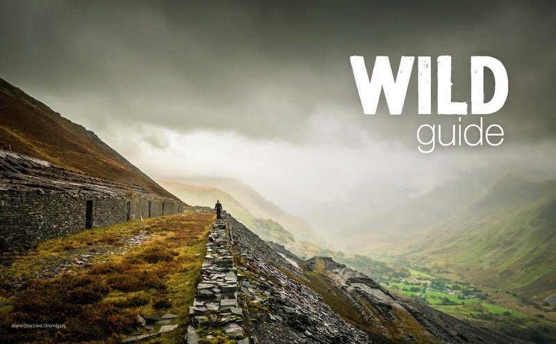 Life in the Country: Recommended Guide Book 'Wild Guide Wales' by Daniel Stuart