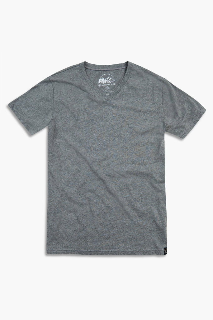 Mens Standard V-Neck T-Shirt