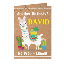 Load image into Gallery viewer, Llama Card