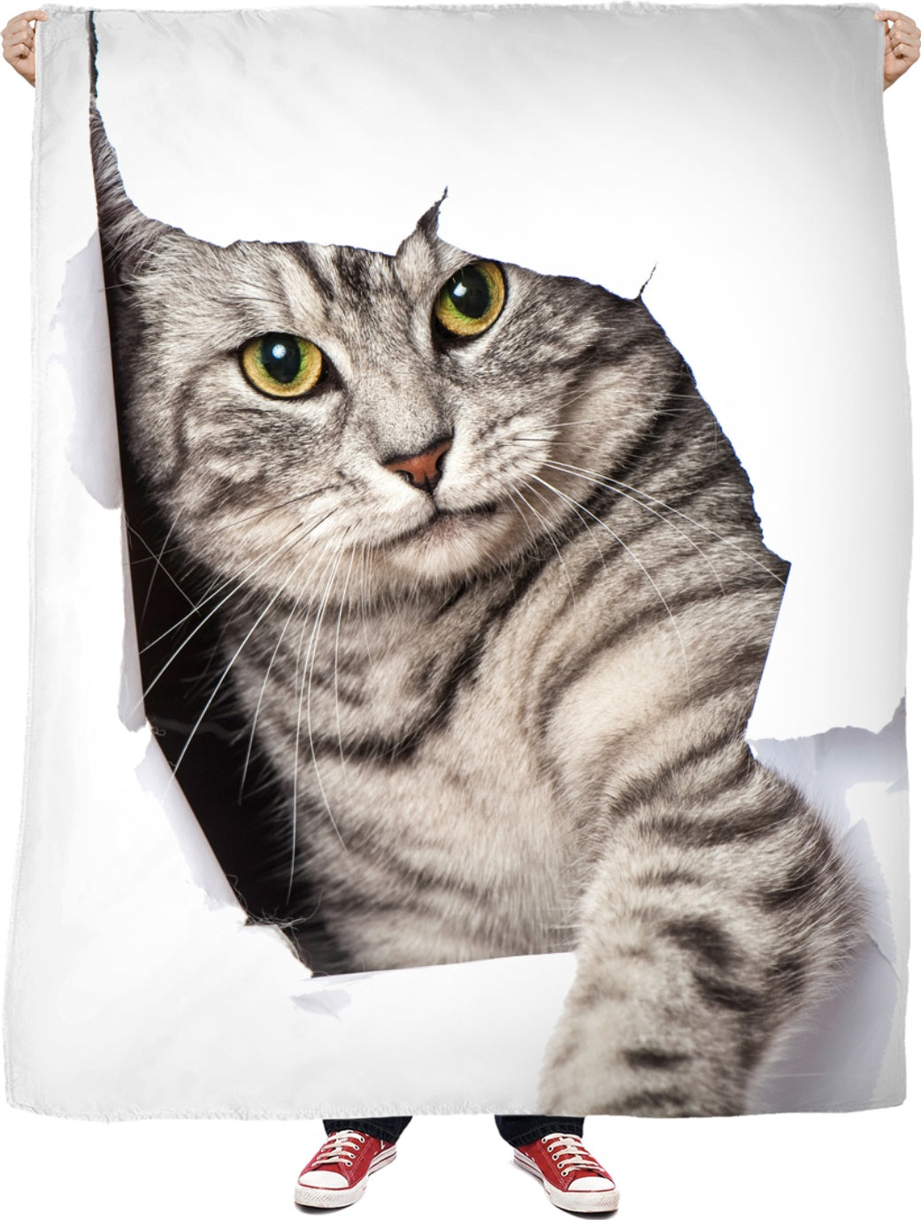 A Cat Hello Fleece Blanket