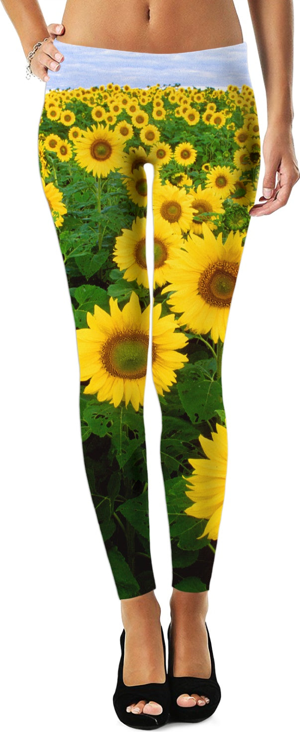 Sunflower Fields Leggings