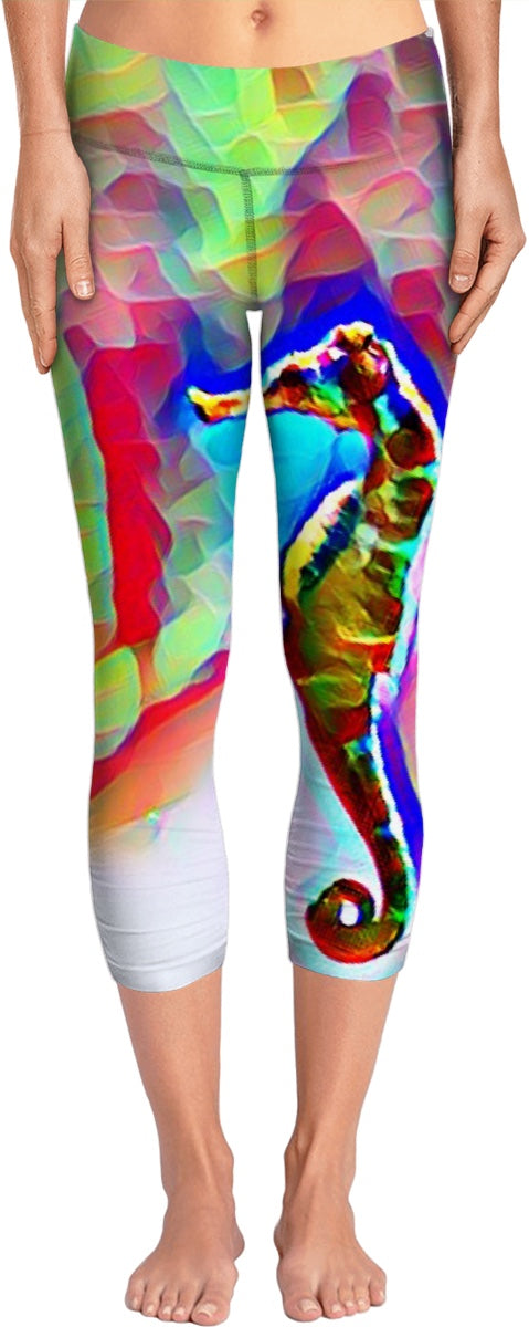 Pot Belly Seahorse Yoga Pants