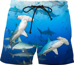 Hammerhead Sharks Swim Trunks