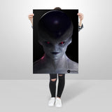 Freeza - Huge Poster
