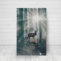 Forest Guardian - Canvas