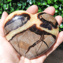 Load image into Gallery viewer, Septarian Heart - Medium