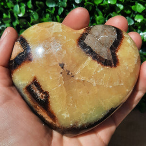 Septarian Heart - Medium