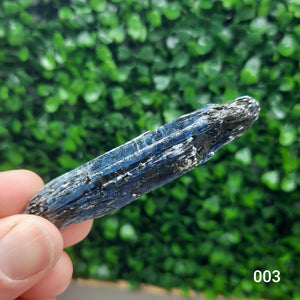 Kyanite Specimens