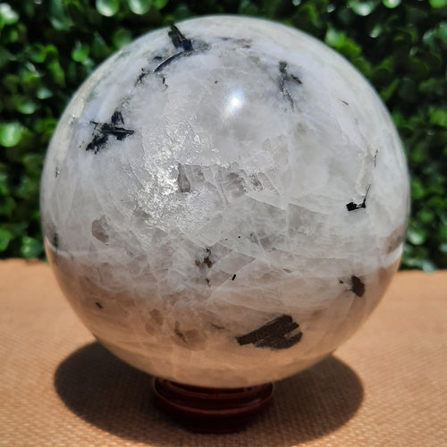 Rainbow Moonstone Sphere ~ Extra Large